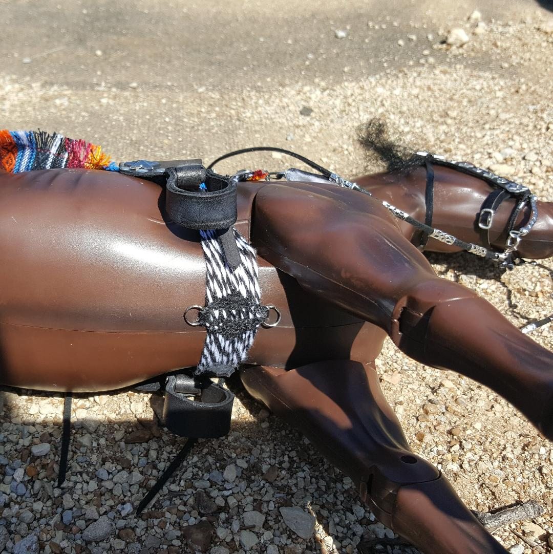DID horse sized saddle for Sabine