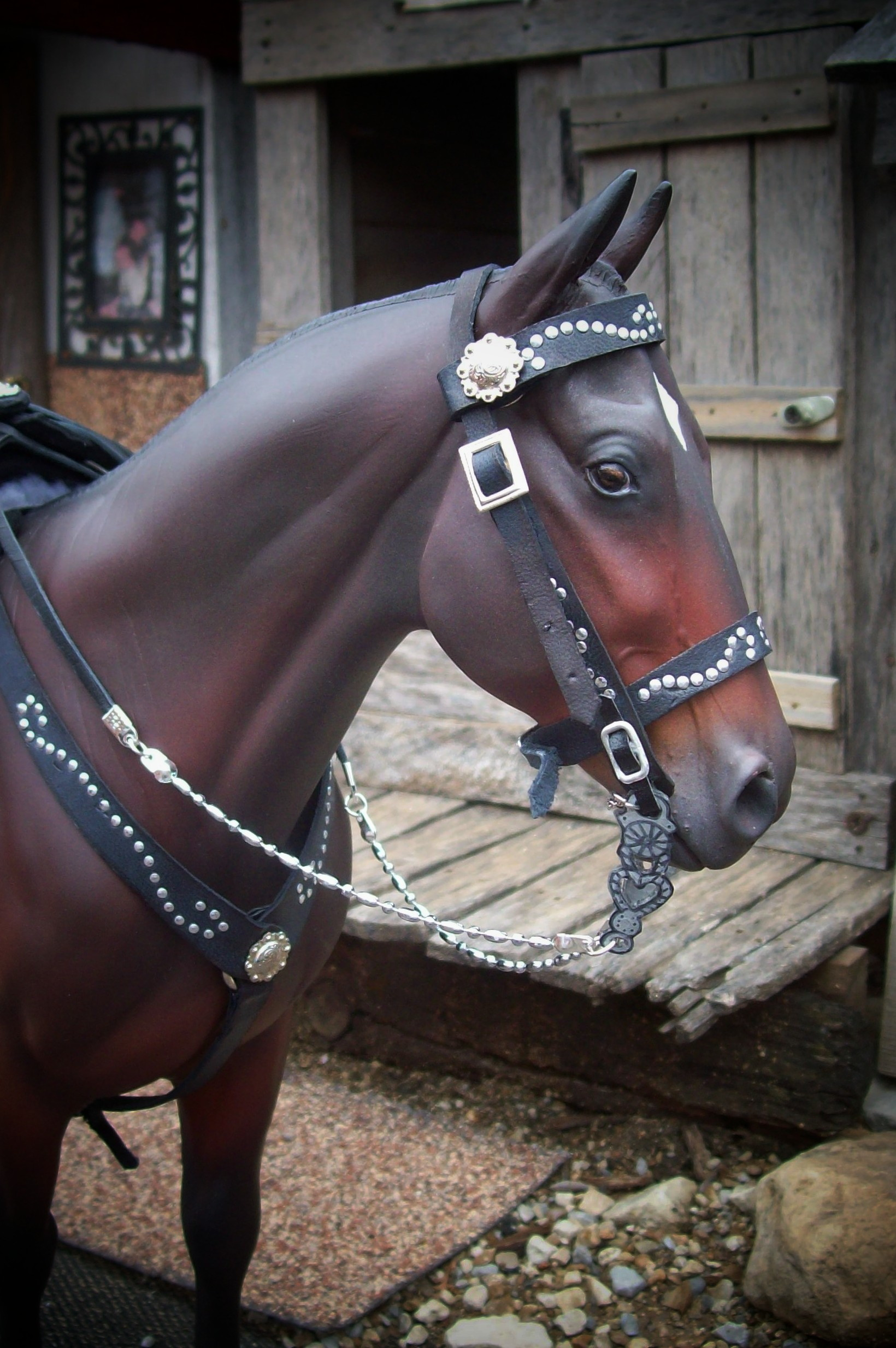 Zorro saddle set